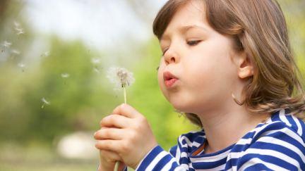 ¿Cuál es la diferencia entre un deseo y una oración?
