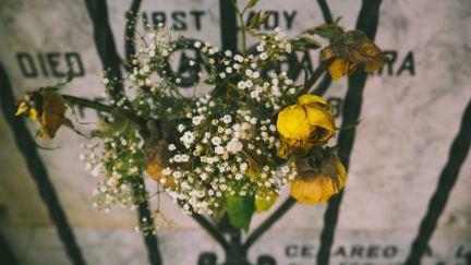 Abrazando la muerte
