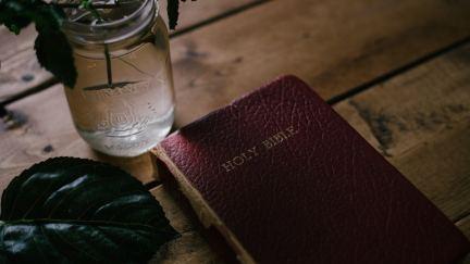 Sexo en la Biblia