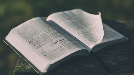 How to Study a Passage of Scripture