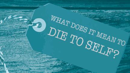 1 millón maneras de morir: pregunta 2