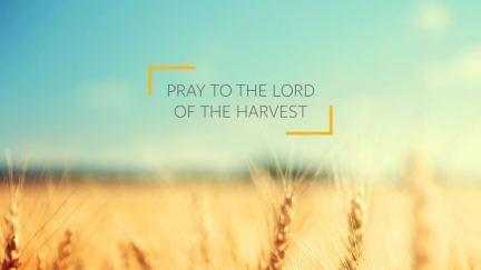 Cómo orar por el futuro