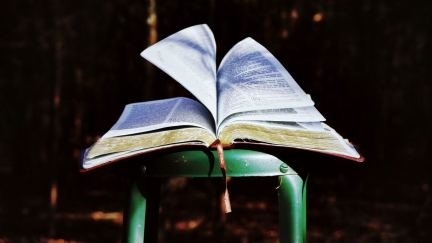 10 Reasons You're Not Reading the Bible