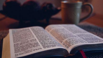 Un tiempo diario con el Señor