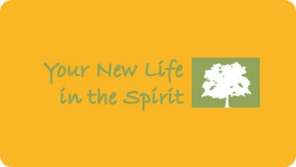 3. Your New Life in the Spirit