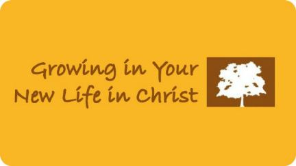 4. Growing in Your New Life in Christ