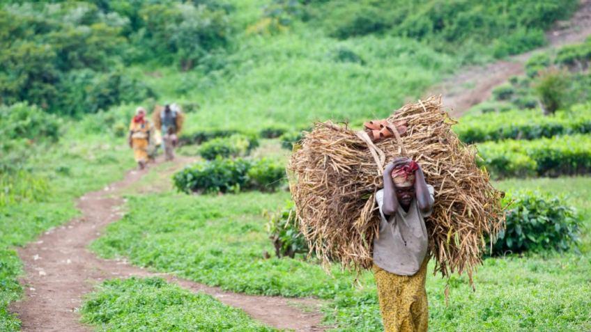 Congo, Dem. Republic