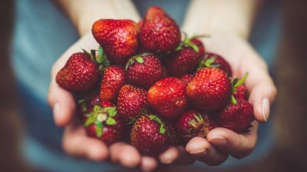 Why God Wants Your Life to Be Fruitful