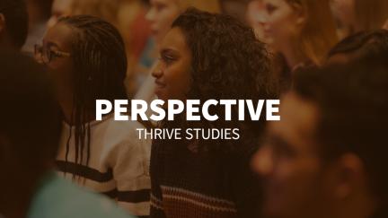 Study 6 – Perspective