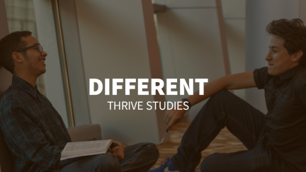 Study 3 – Different
