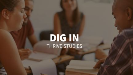 Study 4 – Dig In