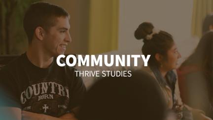 Study 2 – Community