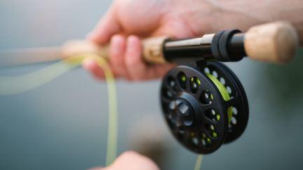 Intentional Fishing