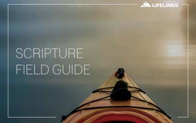 Scripture Field Guide