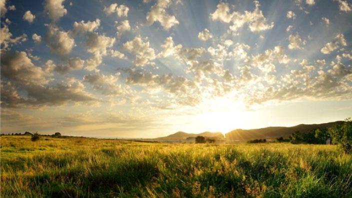 In Search of Natural Light | Cru